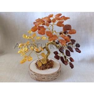 Gintarinis 81 lapelio medis, 10 cm x 10 cm